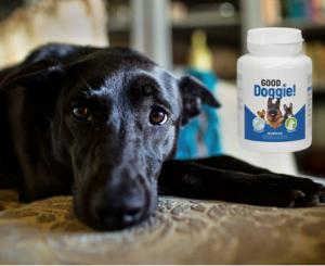 Good Doggie kapsułki, składniki, jak zażywać, jak to działa, skutki uboczne